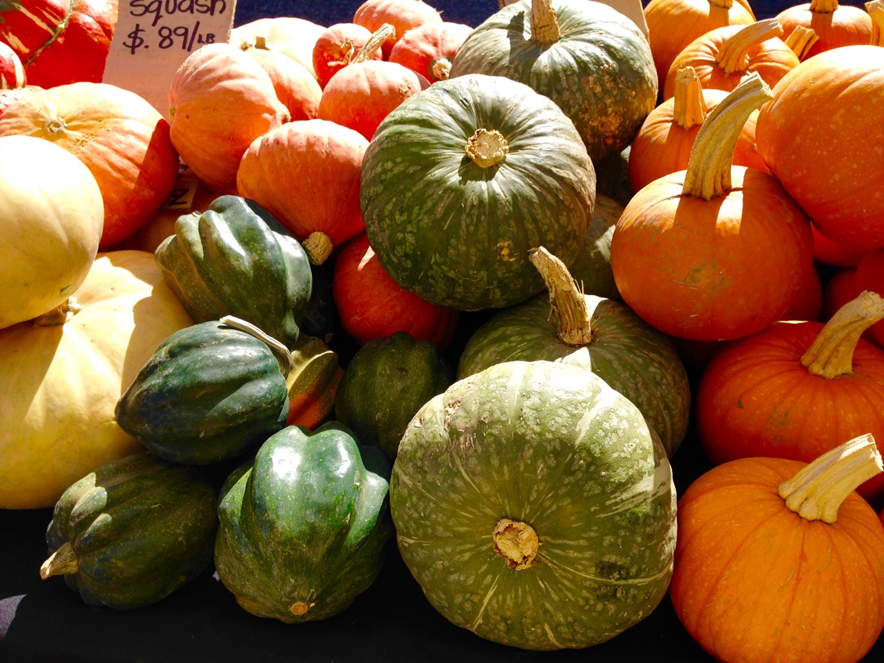 farmers market pumpkins and squash